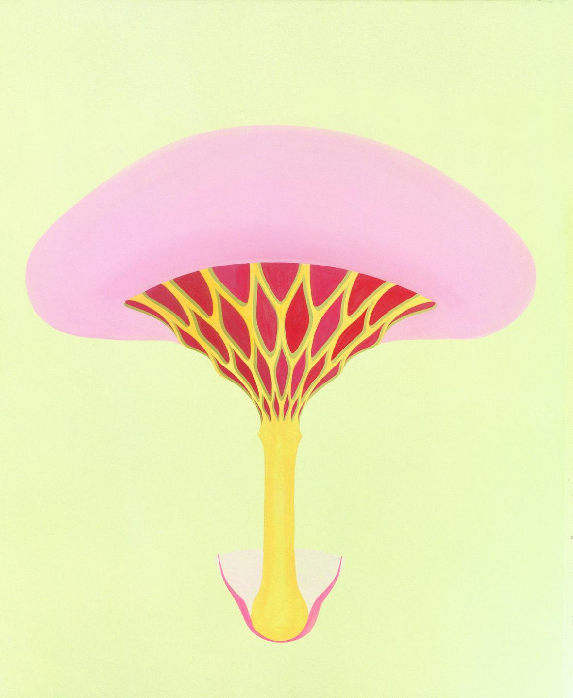 Petr Nikl / Žebrovaná houba, 2001