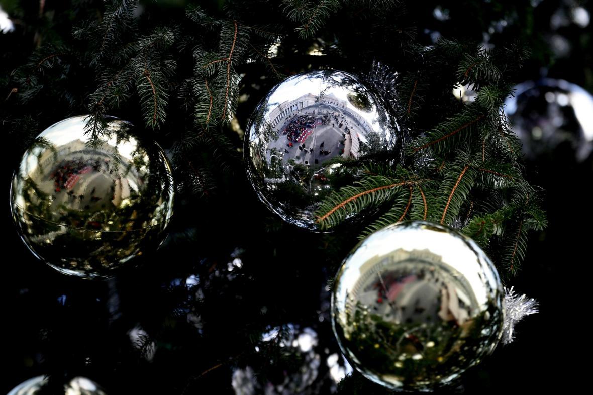 Vánoční strom ve Vatikánu