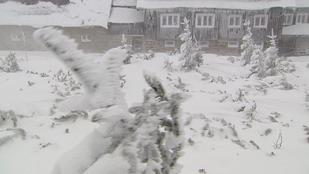 Silný vítr zasáhl sever Česka