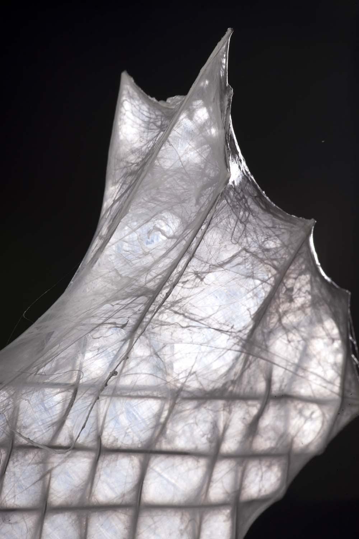 Nanovariace