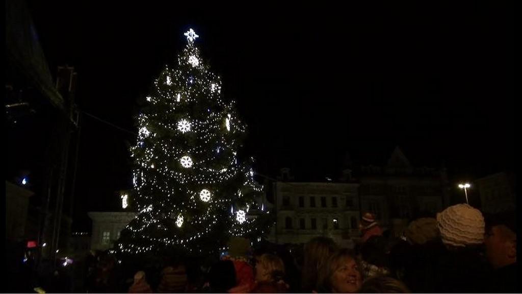 Vánoční strom v Kolíně