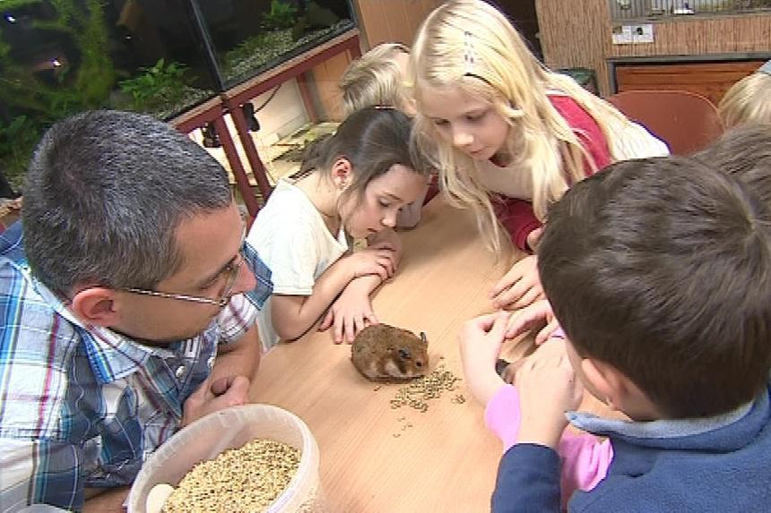 Zoo kroužky jsou určené dětem i dospělým