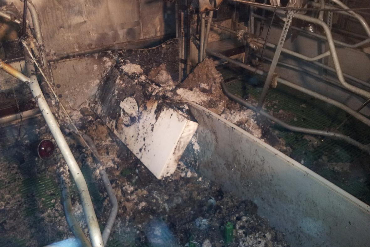 Z hořícího vepřína hasiči zachránili 36 selat a 3 prasnice
