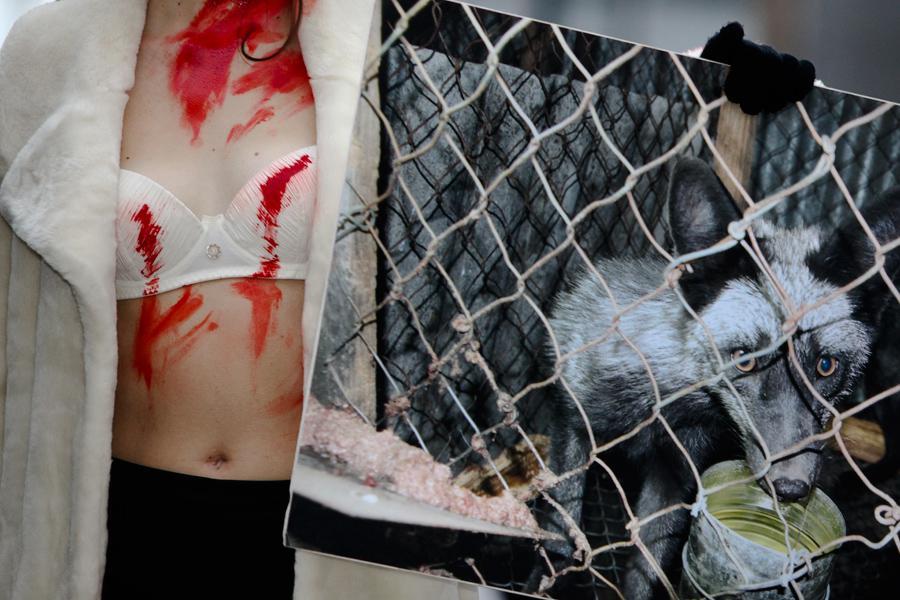 Protest za práva zvířat ke Světovému dni bez kožešin