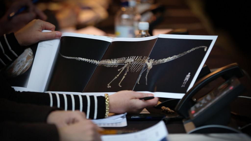 Dražba dinosauří kostry