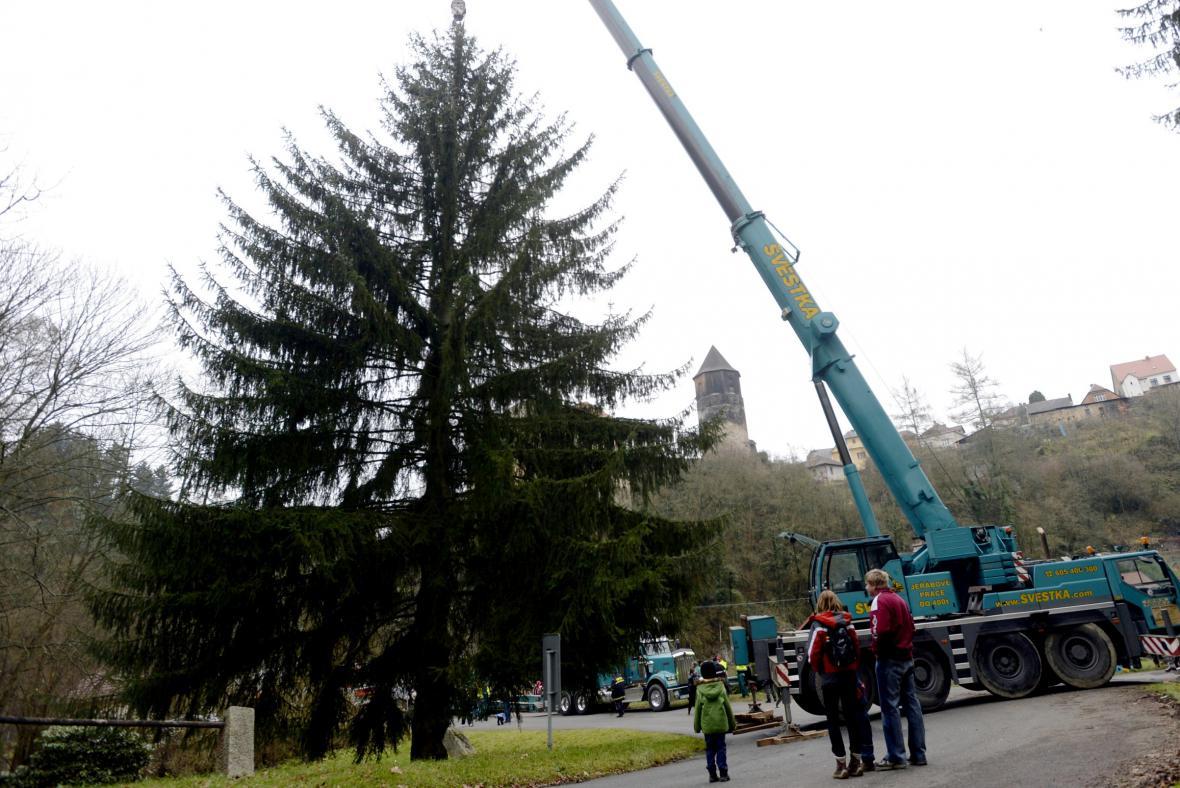 Vánoční strom pro Prahu je z Ratají nad Sázavou
