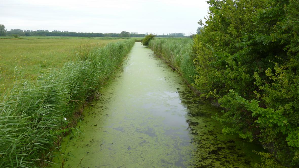 Zelená a bažinatá Normandie