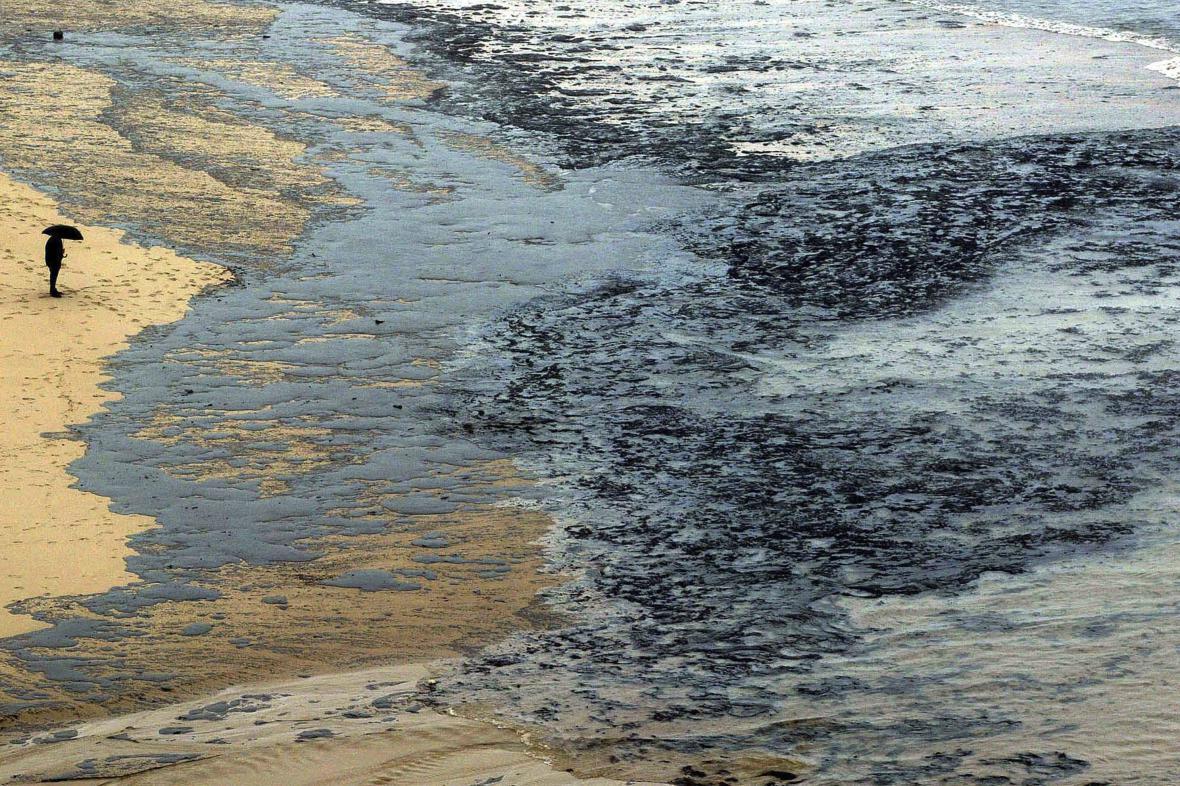 Následky havárie tankeru Prestige