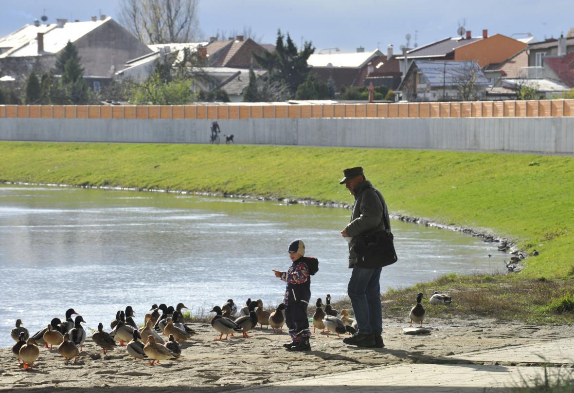 Ochrana před Povodněmi v Olomouci
