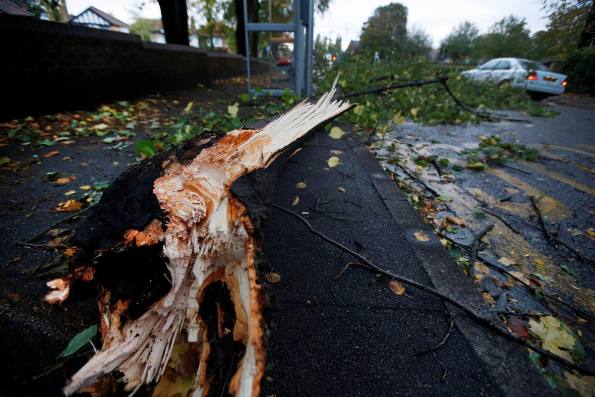 Bouře v Británii polámala stromy