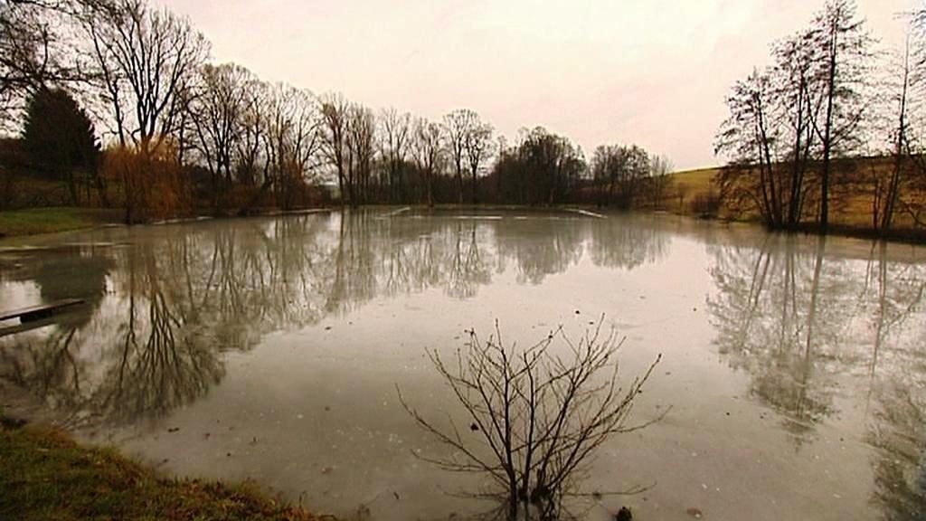 Rybník v Blahutovicích