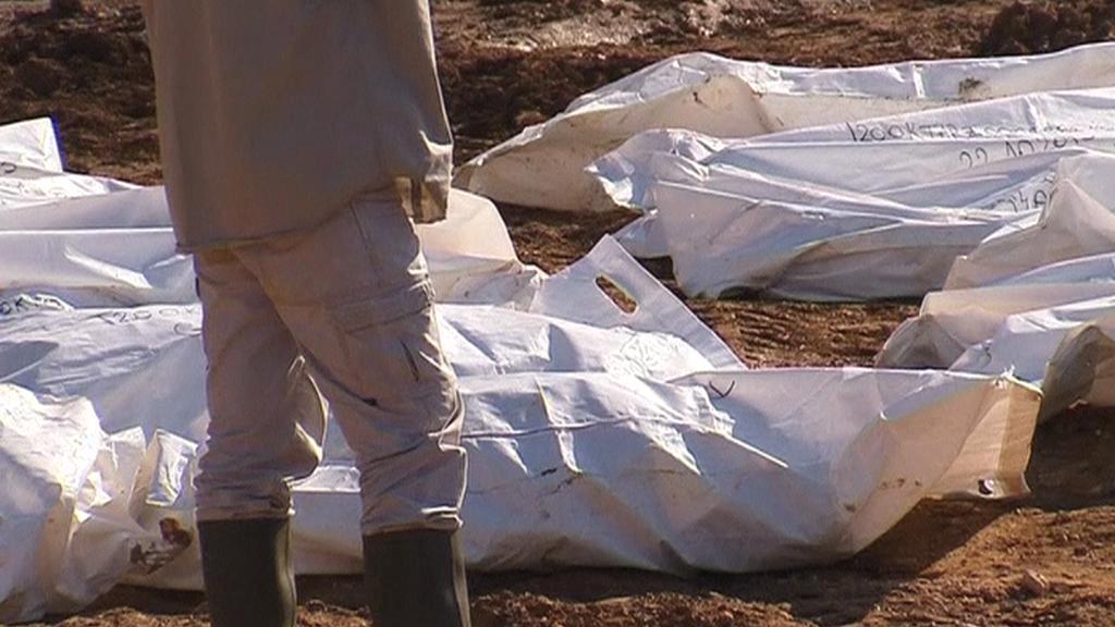 Odkrývání masového hrobu u obce Tomašica