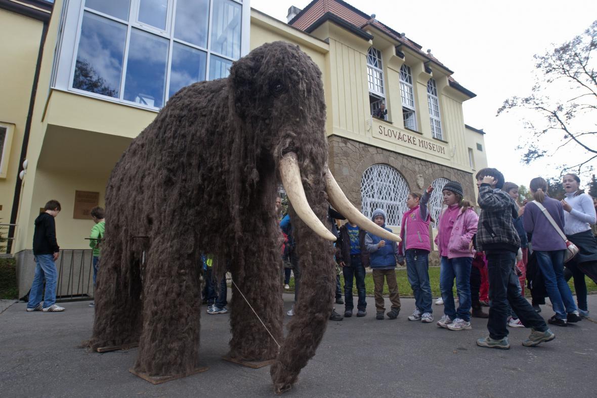 Mamut zamířil do Slováckého muzea