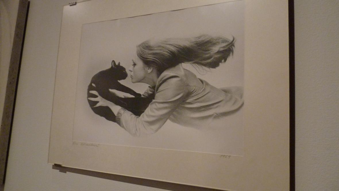 Z výstavy TARAS 1932–1983