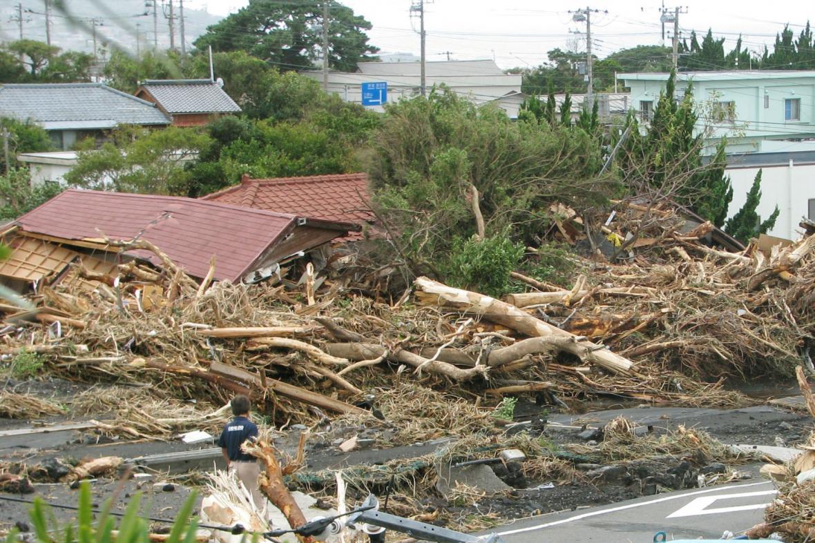 Tajfun Wipha po sobě nechal vyvrácené stromy