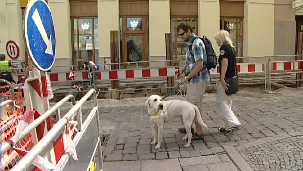 Cesta s vodicím psem je pro nevidomého bezpečnější