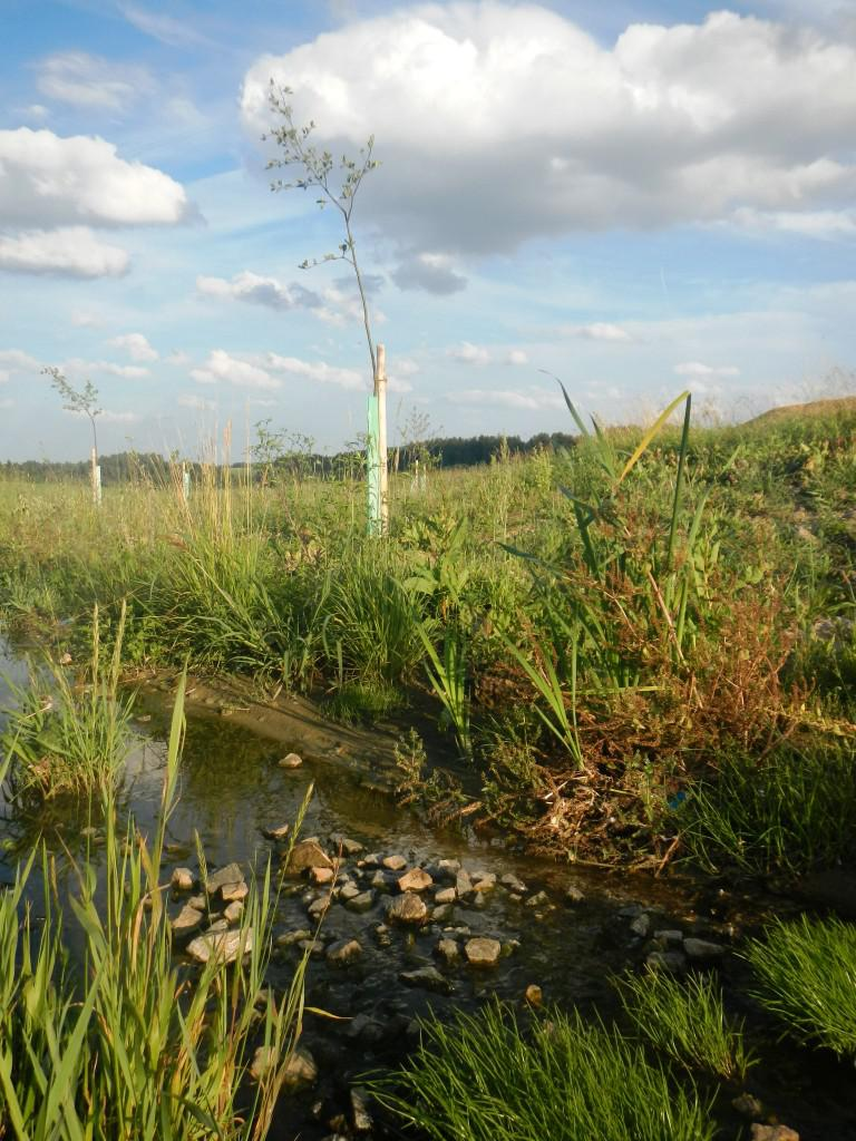 Rataje - revitalizace potoka