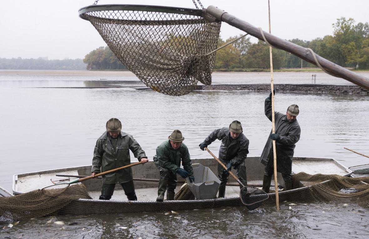 Výlov ryb na Rožmberku