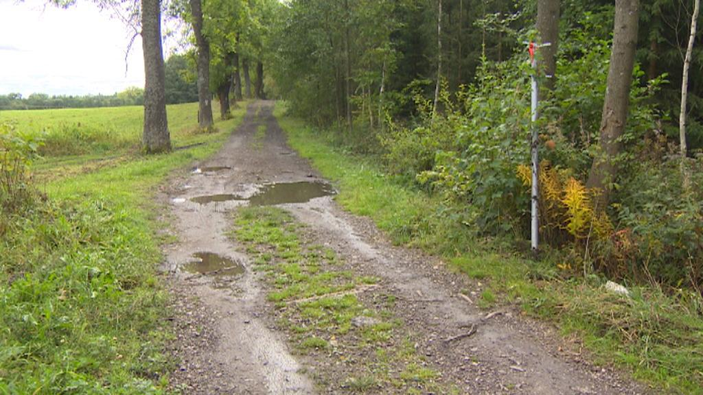 Silnice do Polska