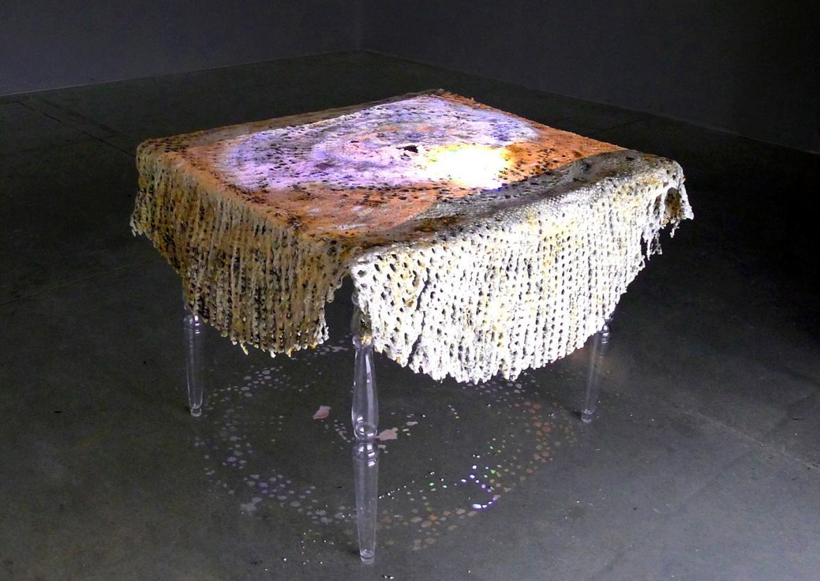 2. místo Terese William Waenerlund, Flornece Table (kopie)