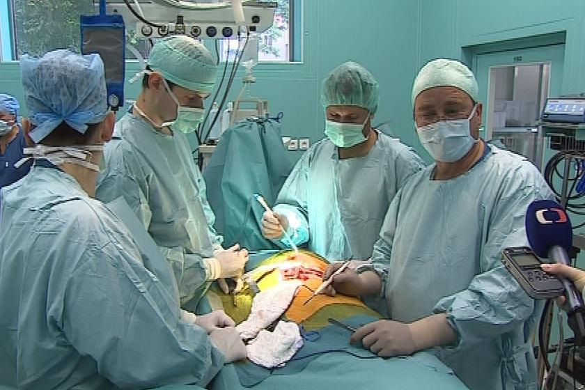 Operace chlopně u prasete