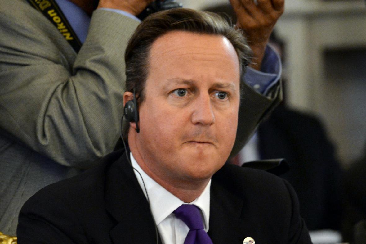 David Cameron na petrohradském summitu G20
