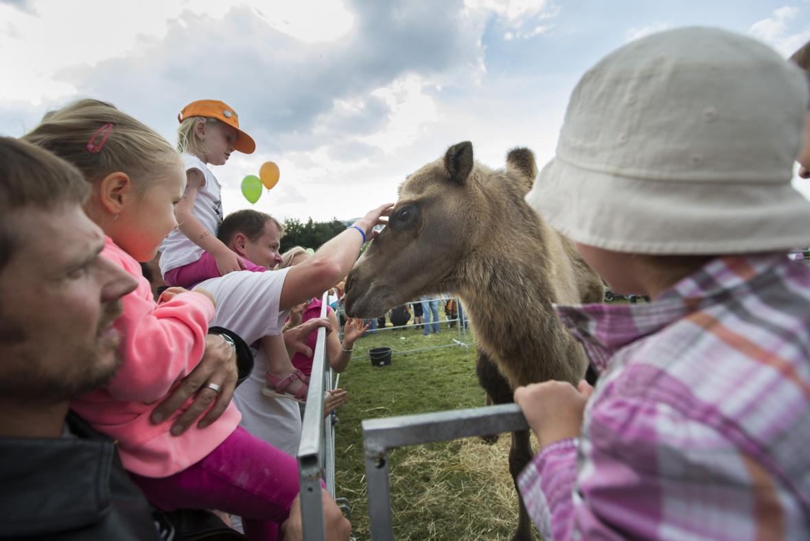 Dětský den na Pankrácké pláni