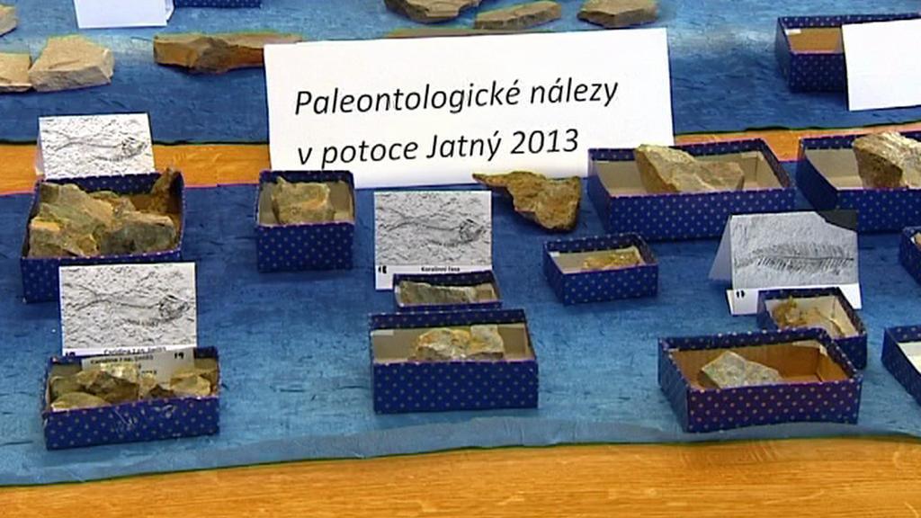 Paleontologické nálezy