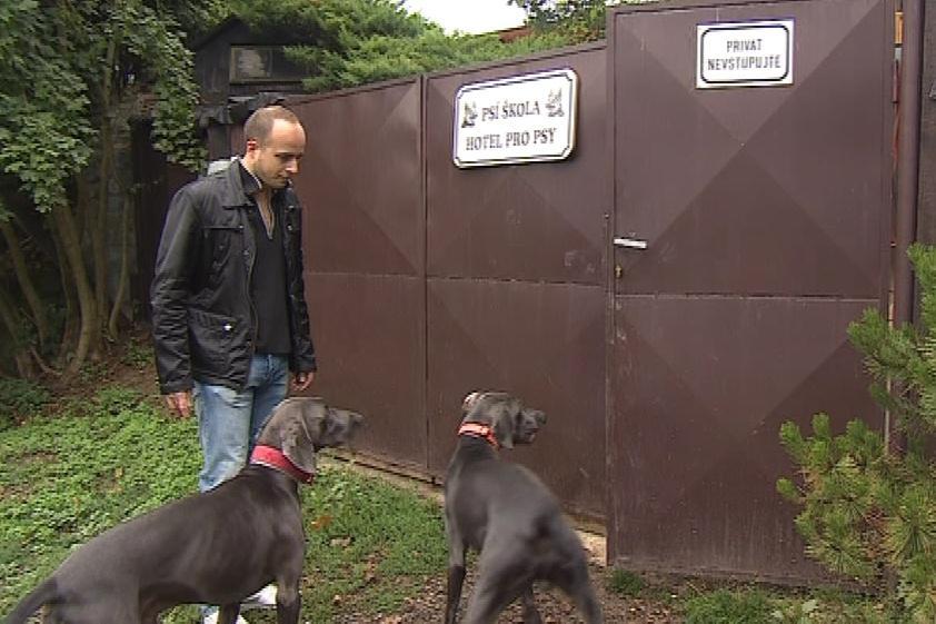 Cairo a Dante chodí do psí školky pravidelně, aby se doma nenudili