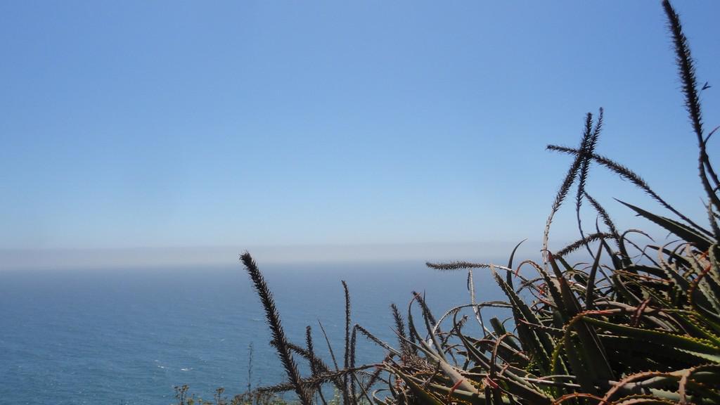 Kalifornie - západní pobřeží