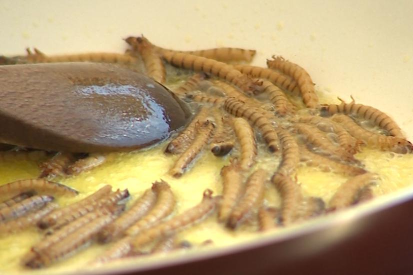 V Luhačovicích se podávaly i nejrůznější druhy hmyzu