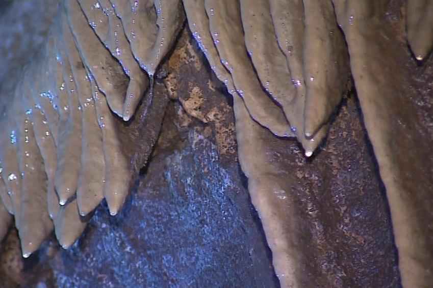 Krápníky v jeskyních v Moravském krasu