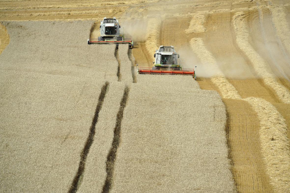 Zemědělci na jihu Moravy už mají téměř sklizeno