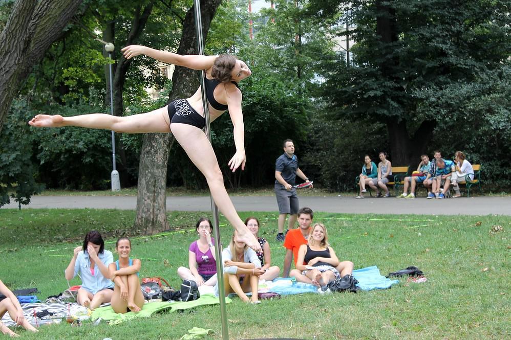 Na pikniku se prezentovaly neziskovky i například tanečnice pole dance