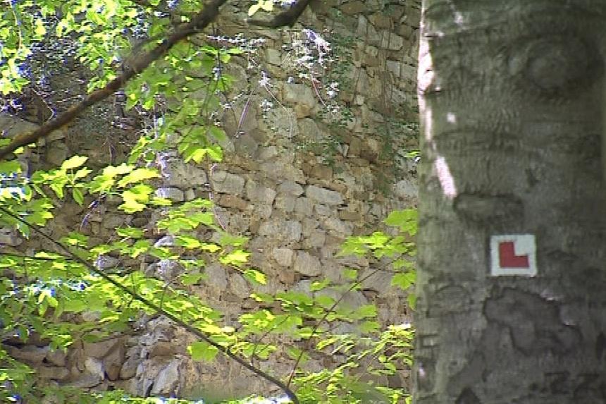 Nad vesnicí Holštejn se tyčí stejnojmenný hrad