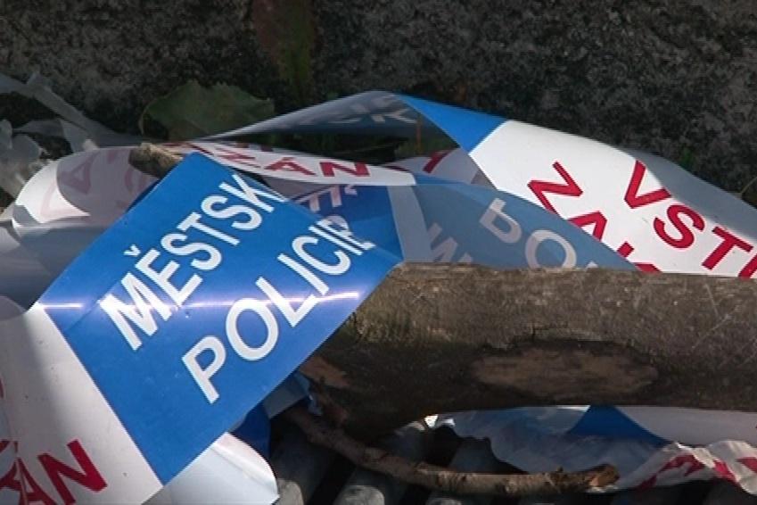 Spadlá část stromu zranila v neděli čtyři lidi