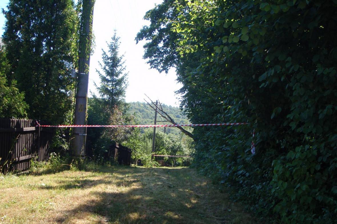 Stromy zpřetrhaly elektrické vedení