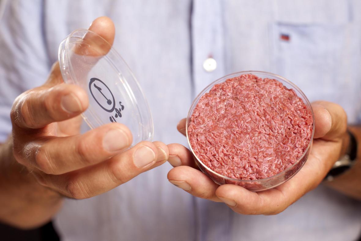 Hamburger z Petriho misky