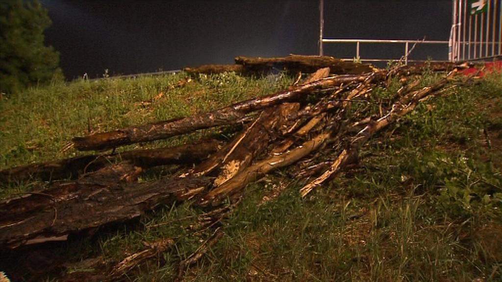Spadlý strom zranil celkem čtyři diváky
