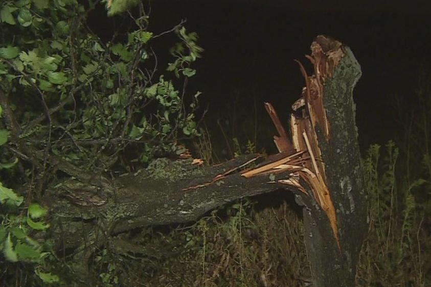 Prudká bouřka lámala stromy na jihu Moravy i na Zlínsku