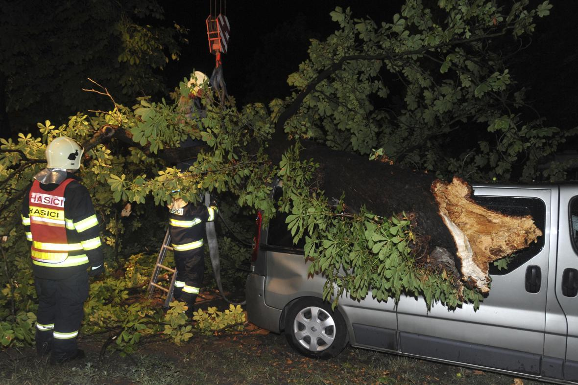 Výjezdů ke zlámaným stromům bylo v kraji celkem 172