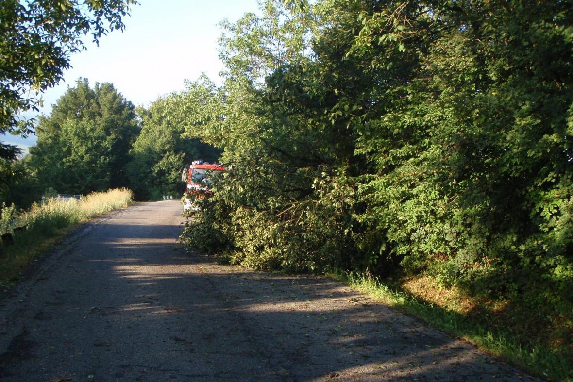 Hasiči na Zlísnku likvidovali většinou popadané stromy