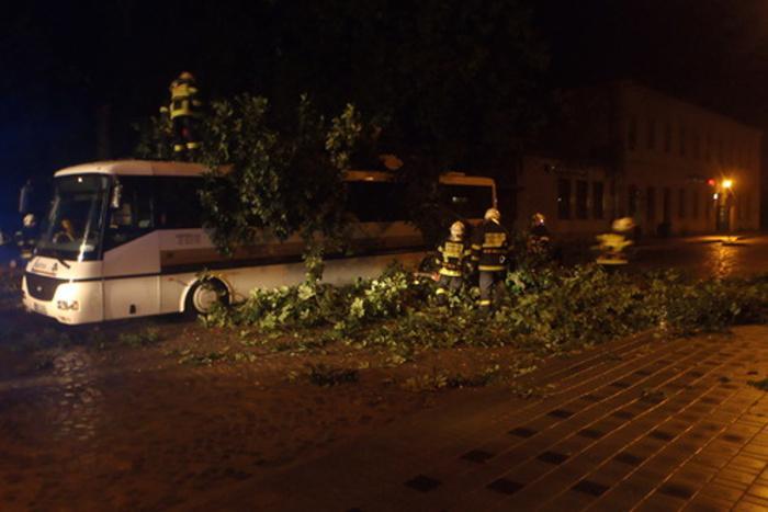 Na autobus spadl strom