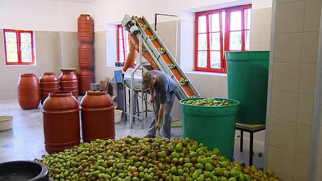Ovoce v palírně