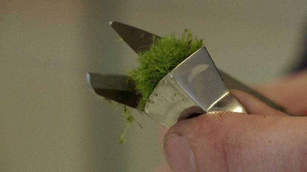 Úprava mechu na unikátním prstenu z Islandu