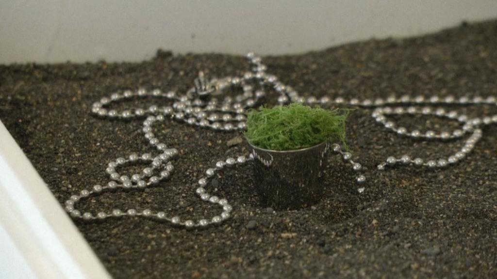 Šperk doplněný islandským mechem