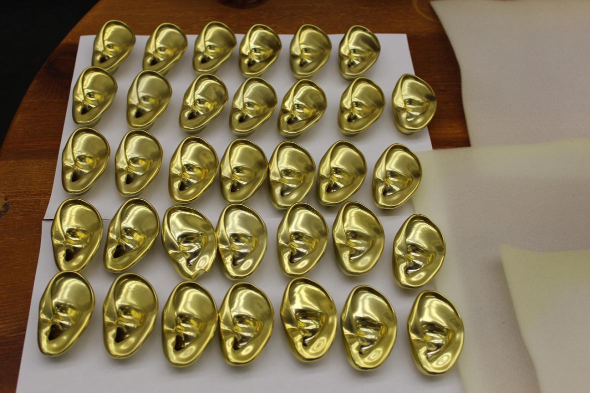 Uši vytištěné na 3D tiskárně