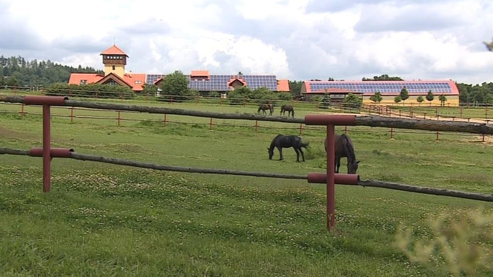 Olšanská farma chová řadu zvířat
