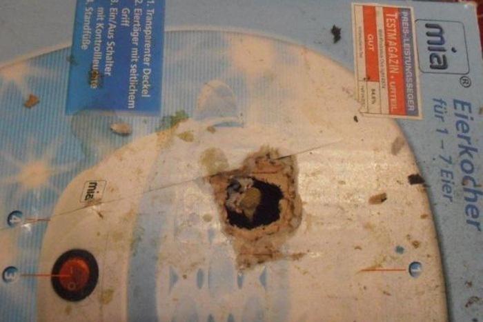 Krabice byly prokousané od myší