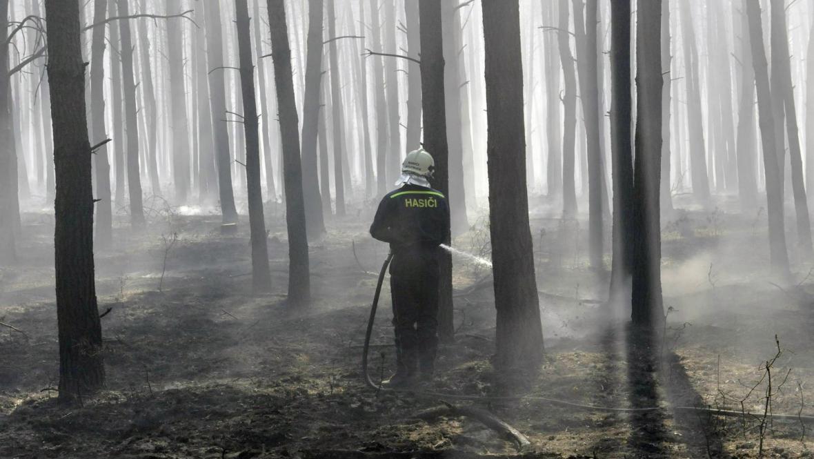 Požár na Hodonínsku